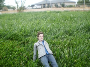 Edward chilaxing in the grass