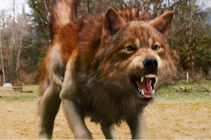 Jacob Full Wolf Form Freeze Frame