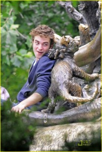 Rob in Wonderland