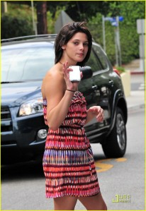 Ashley Greene Le Montrose Hotel