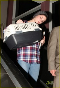Ashley Greene Arrives At LAX